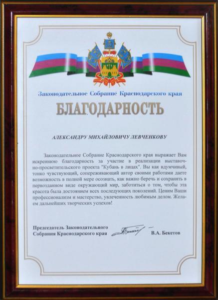 Александр Левченков. 2014. Благодарность